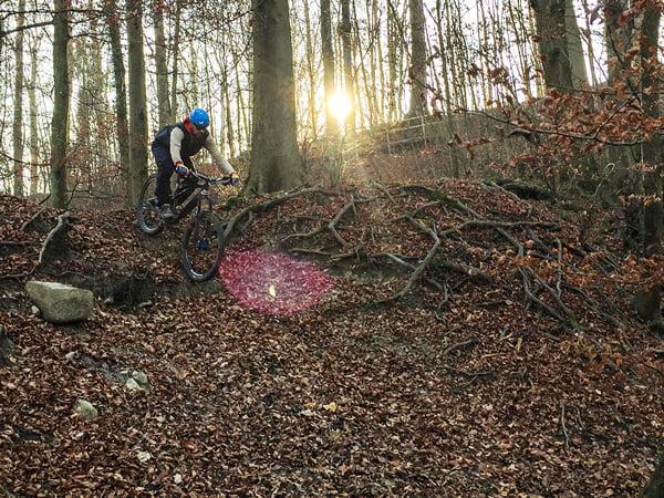 heypretty_braun_bike_nik