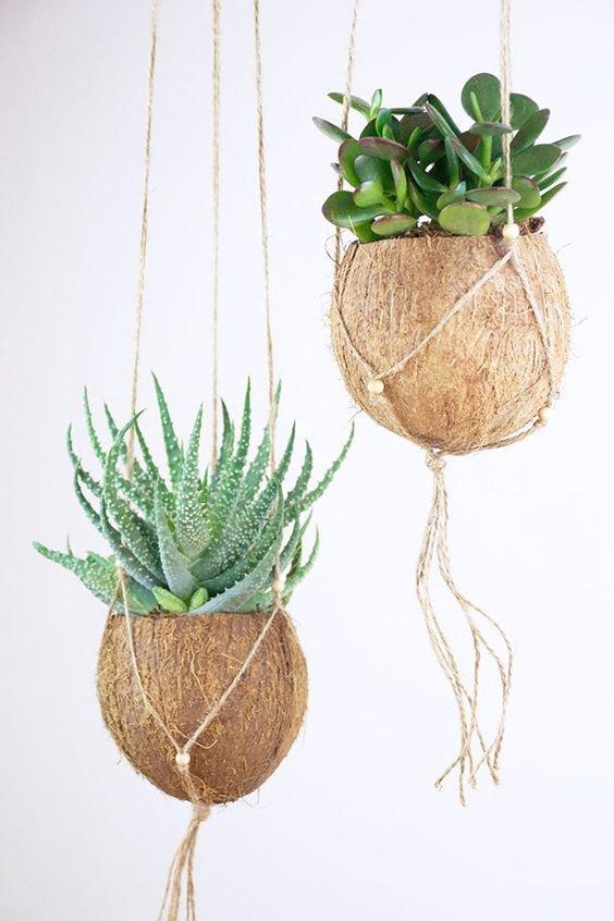 Die besten DIY Bastelideen auf Pinterest: Sukkulenten-Blumenampeln aus Kokosnuss, Barfuss im November