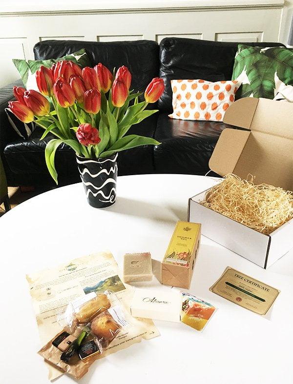 GreenEcoBox: Vorstellung Beauty in a Box Abo auf Hey Pretty