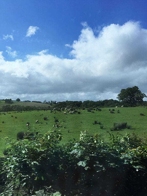 Landschaft ausserhalb von Stirling, Schottland (Hey Pretty Road Trip Edinburgh)