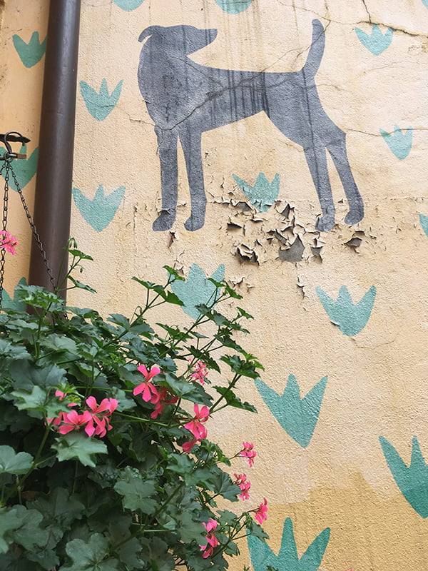 Street Art in Vevey (Image by Hey Pretty)