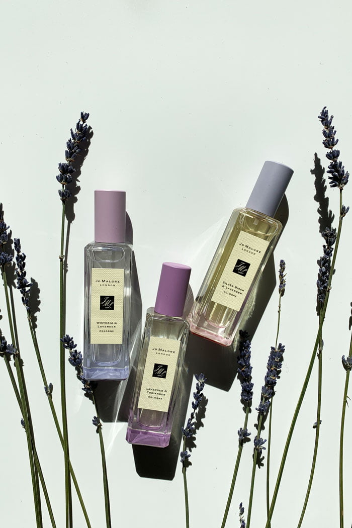 Jo Malone London Limited Edition: Lavenderland (March 2020) – Review auf Hey Pretty Beauty Blog