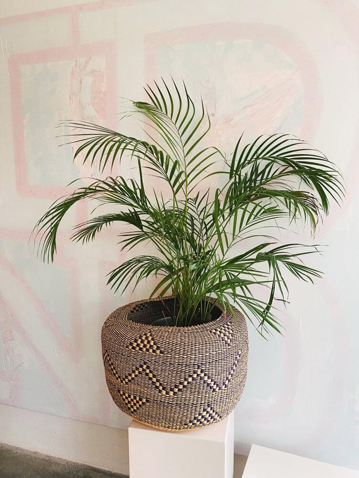 Hey Pretty Beatuy Blog Show Me Your Badezimmerschränkli Kathrin Eckhardt Studio Design Ghana Plant Basket